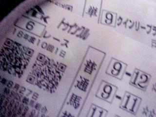 bird_horse4.jpg