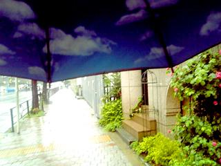 skyumbrella2.jpg