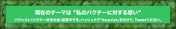 paxi_bar.jpg
