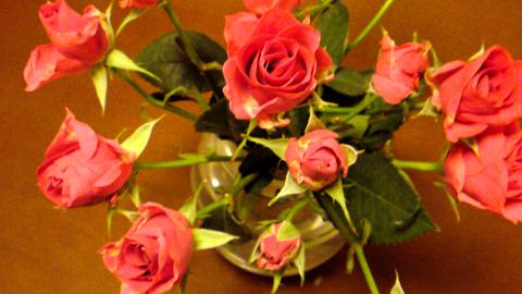 roses.jpg